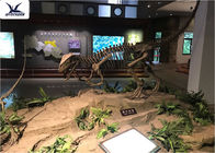 Playground Indoor Artificial Dinosaur Skeleton Replica Life Size Fibreglass Resin